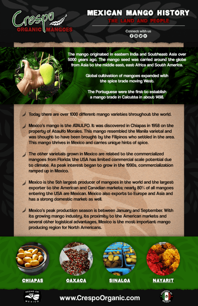Our-Story—History-Poster-PNG-compressor